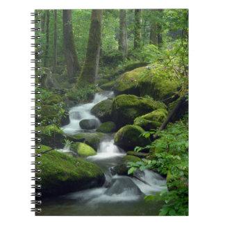 夏の森林小川のノート ノートブック