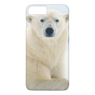夏の氷の大人の白くまの大きい雄豚 iPhone 8 PLUS/7 PLUSケース