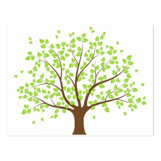夏の緑の木の郵便はがき ポストカード