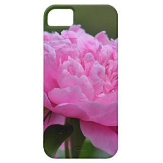 夏の花の写真 iPhone SE/5/5s ケース