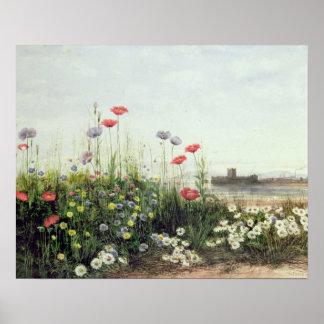 夏の花の銀行 ポスター