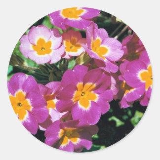 夏の花 ラウンドシール