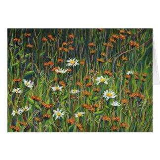 夏の野生の花 カード