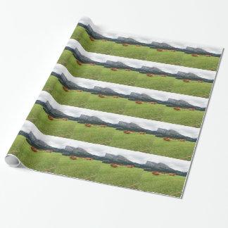 夏の高山の牧草地のブラウン牛 ラッピングペーパー