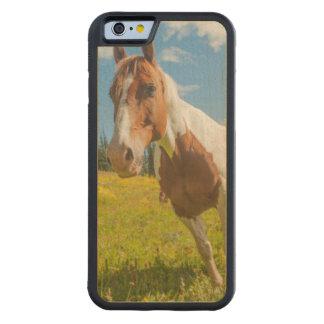 夏の高山草原の好奇心が強い馬 CarvedメープルiPhone 6バンパーケース