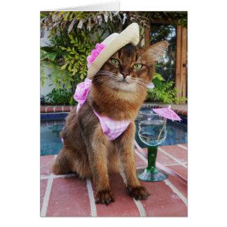 夏を特色にする夏の日猫 カード