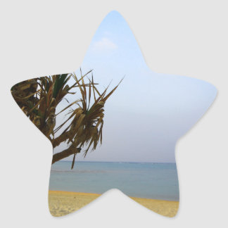 夏沖縄 星シール