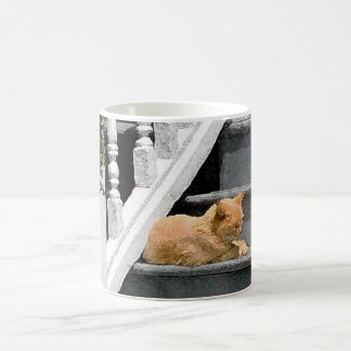 夏猫の昼寝 コーヒーマグカップ