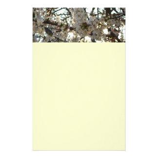 夕べの桜IIの花盛りの春の木 便箋