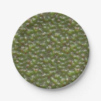 外国の皮の紙皿 ペーパープレート