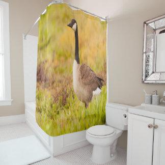 多彩な分野のカナダのガチョウ シャワーカーテン