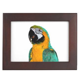 多彩な金ゴールドのティール(緑がかった色)のコンゴウインコのオウムの鳥のポートレート ジュエリーボックス