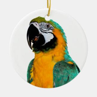 多彩な金ゴールドのティール(緑がかった色)のコンゴウインコのオウムの鳥のポートレート セラミックオーナメント