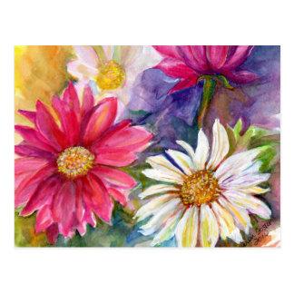 多彩のガーベラのデイジー ポストカード