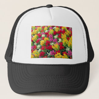 多彩の花 キャップ
