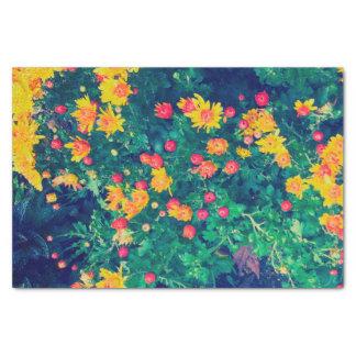 多彩草原のお洒落な野生のデイジーの花 薄葉紙