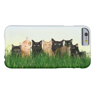 多数の子猫猫 BARELY THERE iPhone 6 ケース
