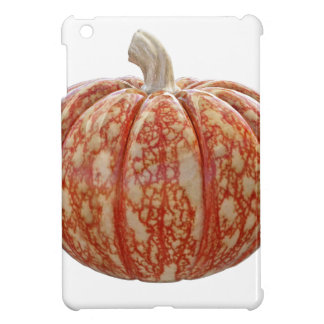 多色のなカボチャ iPad MINIケース