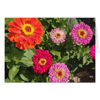 多色刷りの花 カード