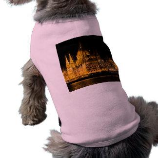 夜のブダペストの議会 ペット服