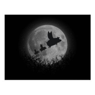 夜の飛んでいるなブタ家族 ポストカード