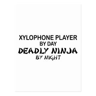 夜までに木琴の致命的な忍者 ポストカード