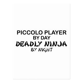 夜までにPiccolo致命的な忍者 ポストカード