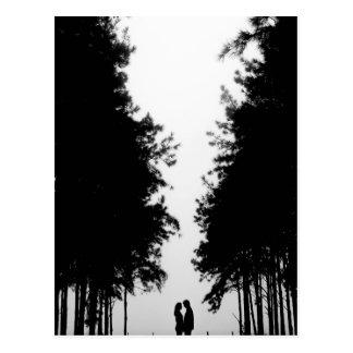 夜森林カバー ポストカード
