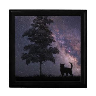 夜猫 ギフトボックス