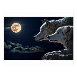 夜空は月の星の天文学の宇宙をつけます ポストカード