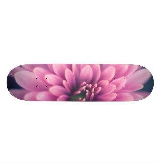 夢の触手 スケートボード