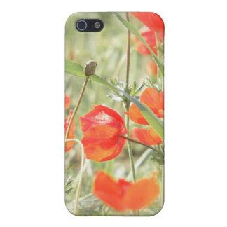 夢みるようなケシI iPhone 5 CASE