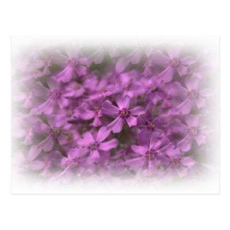 夢みるようなピンクの花 ポストカード