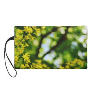 夢みるような黄色によってはリストレットが開花します リストレット