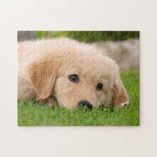 夢を見ているゴールデン・リトリーバーのかわいい子犬ゲーム11x14 ジグソーパズル