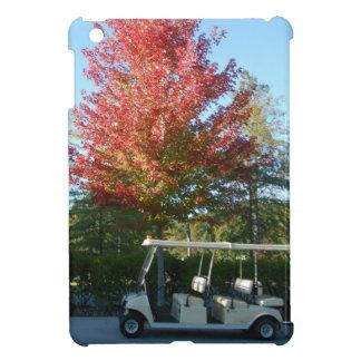 大きいカヌーのDSCN3942.JPGのゴルフカート iPad MINIカバー
