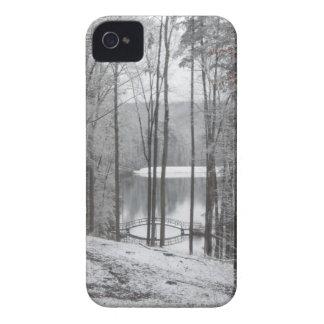 大きいカヌー、ジョージア Case-Mate iPhone 4 ケース