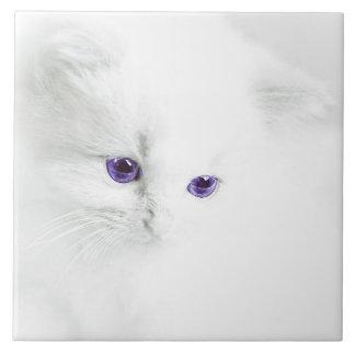 """""""大きいセラミックタイル""""の""""白い子ネコ""""。 タイル"""