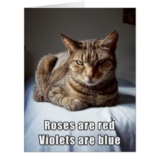 大きいバレンタイン猫のおもしろいな詩 カード