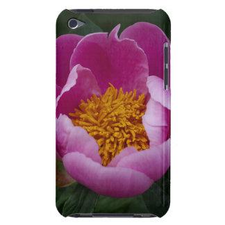 大きいピンクのシャクヤク Case-Mate iPod TOUCH ケース