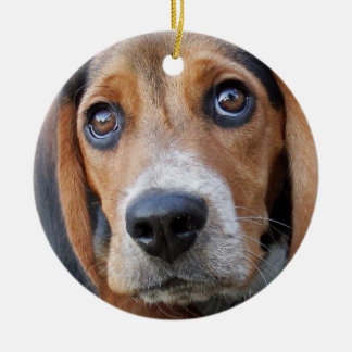 大きいブラウンによって注目されるビーグル犬の小犬 セラミックオーナメント