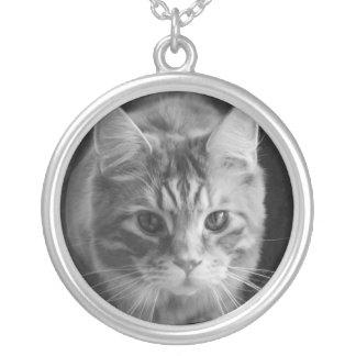 大きい円形のネックレスのメインのあらいぐま猫 シルバープレートネックレス