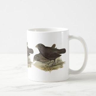 大きい地上のフィンチ コーヒーマグカップ