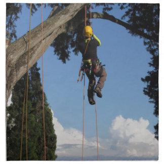 大きい木からつるしている樹木外科専門家の樵 ナプキンクロス