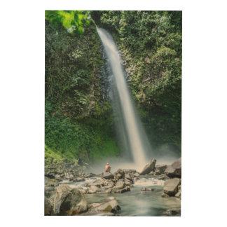 大きい滝、コスタリカの前に坐っている人 ウッドウォールアート