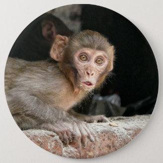 大きい目ボタンを持つおびえさせていた猿 15.2CM 丸型バッジ