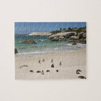 大きい石のビーチ、南Simonsの町のペンギン ジグソーパズル