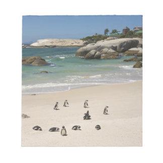 大きい石のビーチ、南Simonsの町のペンギン ノートパッド