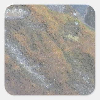 大きい石の表面の質 スクエアシール