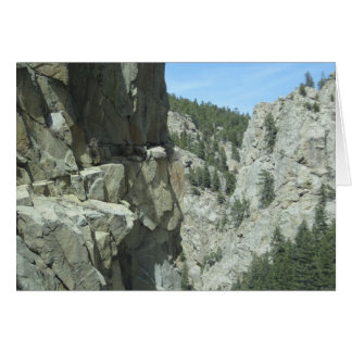 大きい石渓谷のコロラド州山の写真カード カード